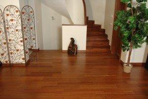 Sapelli lamine plank